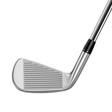 TaylorMade P790 Steel Irons