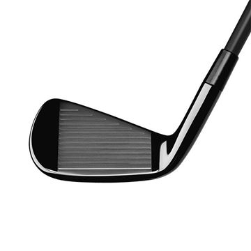 TaylorMade P790 Black Steel Iron, Golf Clubs Irons